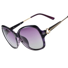 UV400 Flat Brow Aviator Wayfarer Sun Glasses