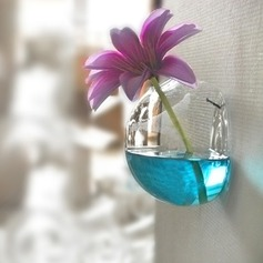 Cute Hanging Glass Vases(Flowers Not Include)