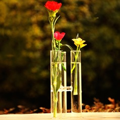Sweet Tube Connected Glass Vases(Flowers Not Includ)