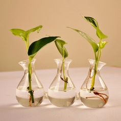 Special Connected Glass Vases(Plant Not Inlcude)